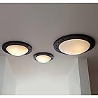 Потолочный светильник Robers DE 2550-A